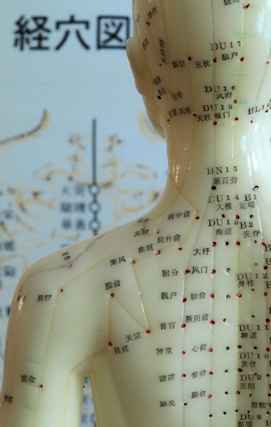 canberra-acupuncture-points-charts
